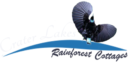 Crater Lakes Rainforest Cottages – accommodation on the Atherton Tablelands, near Yungaburra.